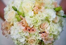 Wedding Bouquets Shrewsbury / Wedding Bouquets Shrewsbury by Julie Nicholas Florist