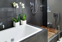 Home- Bathe (bathrooms) / Indoor bathrooms, outdoor showers, faucets, tubs, ways to cleanse oneself and freshen up.