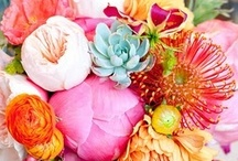 Flowers / by Krystle Monticue