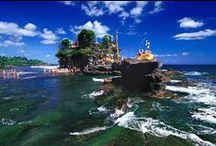 globerockin' Bali / Informiere dich über deine Möglichkeiten mit AIFS nach Bali zu reisen: Freiwilligenprojekte / Surfcamps >> www.aifs.de