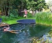 Garden- Fire & Water / Backyard projects- for cooking, heating, swimming, catching water.