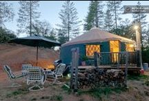 It Yurts So Good / by Airbnb