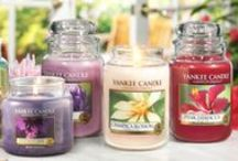 Home Fragrances / Candles, reed diffusers, and other home fragrance gifts