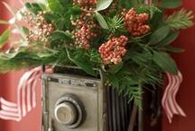 Christmas Ornaments / by Patricia Gasparino