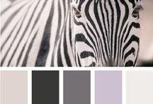 we can haz zebra... / we can haz zebra?  Zebra stripes still remind me of Daniel R. & that Daniel can not haz zebra... / by Maureen McCabe