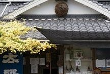 Japan / by Paula Kuhl