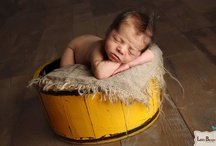 newborn photography / by Ashley Dickerson