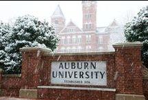 Auburn / by Michael Galloway