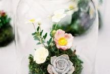 Centerpieces and Arrangements / Ideas and inspiration