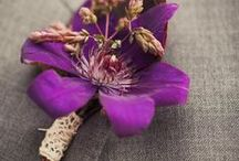 Purple Weddings / Purple Wedding Ideas and Inspiration - Aisle decorations, favors, bridal bouquets, stationery, table settings, wedding cakes, reception and ceremony decor, centerpieces ...