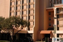 Dallas-Love Field, Texas, USA / The Park Inn Dallas-Love Field, Texas hotel is pleased to offer guests a vibrant, friendly hotel situated nearby downtown Dallas and the Dallas/Fort Worth Airport. / by Park Inn by Radisson