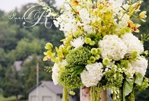 Green and White Weddings By Rachel A. Clingen