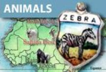 Zoo Animals & Zoos - Vintage Charms & Bracelets / Vintage Silver and Enamel Zoo Animals & Zoos of the World Charms. Circus themed charms. Animal Charms.