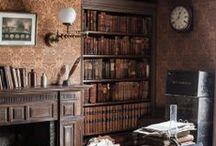 Cosy Gothic / Moody antique interiors.