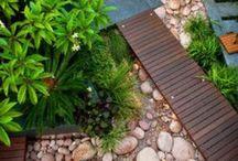 Paving & Foliage / Path and plant