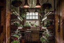 Greenhouse | Garden shed / .