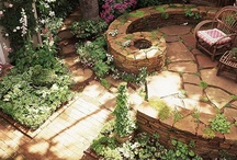 Gardening Ideas / Share gardening: flowering plants, food plants, fences, patios, outdoor spaces, walkways, pools, trees, food canning and so on. Please be respectful of others by keeping it clean and don't over-post (5-10 a day) // If you spam, you will be removed from ALL my boards. I want to think the best from everyone, I know times are hard, but keep your products related to board topic.