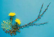 Flores sobre papel / Trabajos de artistas que, como nosotros, trabajan con flores y que nos resultan inspiradores