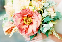Wedding Bouquets / Beautiful real wedding bouquet photos; from traditional to modern weddings, bouquet inspiration and ideas for your wedding. This board includes popular wedding bouquet styles: nosegay bouquets, cascading bouquets, pomander bouquets, hand-tied wedding bouquets & more... with red bouquets, orange bouquets, yellow bouquets, green bouquets, blue bouquets, purple bouquets, violet bouquets, lavender bouquets, pink bouquets, blush bouquets, peach bouquets, white bouquets, ivory bouquets & more.  / by Tess Pace