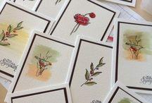 Card Inspirations / by Carol Davis