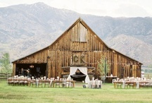 Wedding Venues / Real wedding venues places & spaces; inspiration and ideas for your wedding location.  / by Tess Pace
