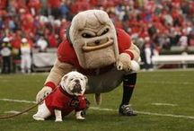 UGA Football / by Theresa Phillips