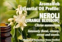 Essential Oil and Absolute Profiles / Essential Oil profiles includingthe uses, benefits, properties, safety information for each oil. / by AromaWeb Aromatherapy