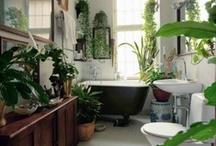 Bathroom Mood Board / by Hannah Pagan
