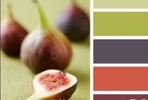 Color Ideas / by Lois Singleton