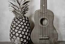 Maui / by Bikini Thief