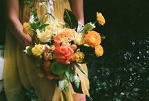 Flora / by Pippa Darling