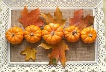 Fall / by Creative Carmella