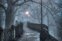 The path not taken / by Cristin Rydzewski