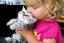 Kittys / by Trina