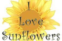 Sunflowers / by Nikki Philo-Hale