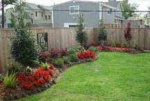 Landscaping Ideas / by Rita Grantham