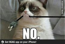 I <3 Grumpy