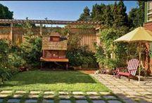 Garden - Back Yard / by Seana Yates