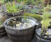 Mini wildlife ponds / How to make a mini wildlife pond, small wildlife pond ideas, mini wildlife water features, plus how to help wildlife in a small garden.