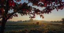 "Autumn Photos that are ""freegal"""