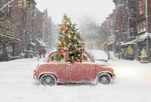 holiday ideas / by Sarah Kingsley