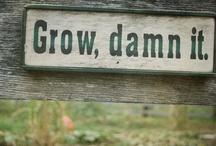 Garden Ideas / by Melanie A Grout