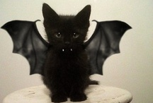 My Goth Style