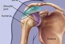 Shoulder Pain SUCKS / Shoulder Pain from Torn Muscles & Bursitis