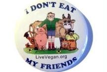 Animal Advocate ~ Please do NOT eat My Friends! ~ Go Vegan!