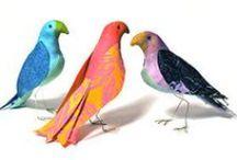 Jane Davila's Birds