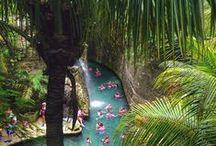 Ríos Subterráneos / Vive la experiencia de ser impulsado por corrientes de agua fresca! Decide si deseas explorar el Río Azul, Río Maya o Río Manatí; los tres ríos de Xcaret desembocan a orillas del mar, junto a manglares habitados por flamencos rosas.