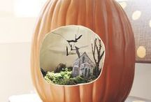 Pretty Pumpkins / Ideas for creating pretty as a picture pumpkins and unusual pumpkin carving inspiration / by Folksy