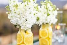 Celebrate / Party and special event ideas / by Wendy McMonigle WM Design House