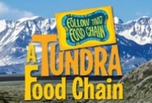 Follow That Food Chain series / A nonfiction series featuring 12 different habitats and and creatures that live in them. Choose a starting animal, read about it, then pick what it eats, and flip to that animal's page. Your choices create a path through that habitat's food web. But watch out for those dead ends!